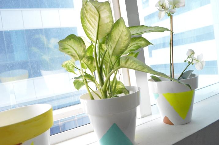 DIY colorblock planters
